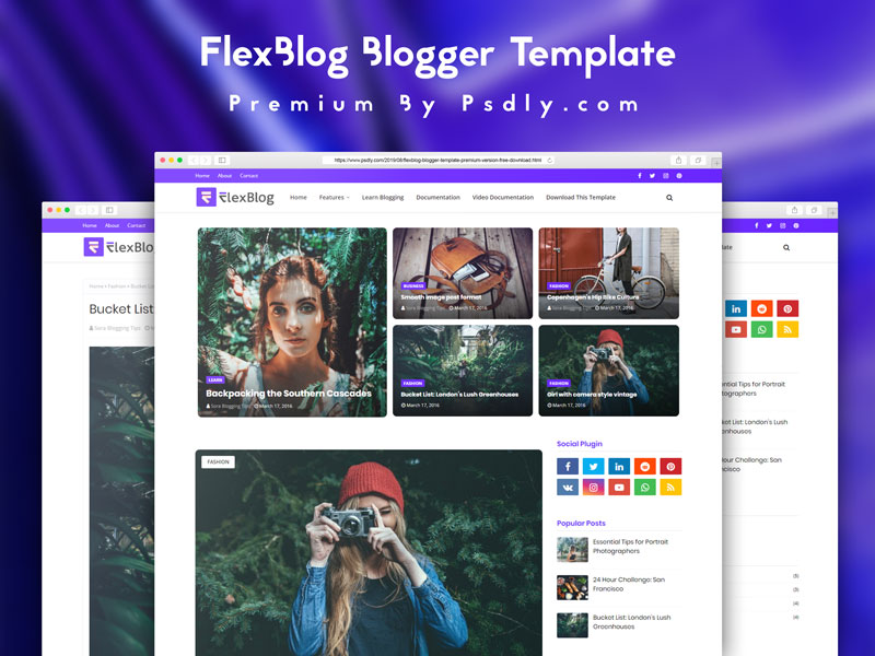 FlexBlog Blogger Template Premium Version Free Download