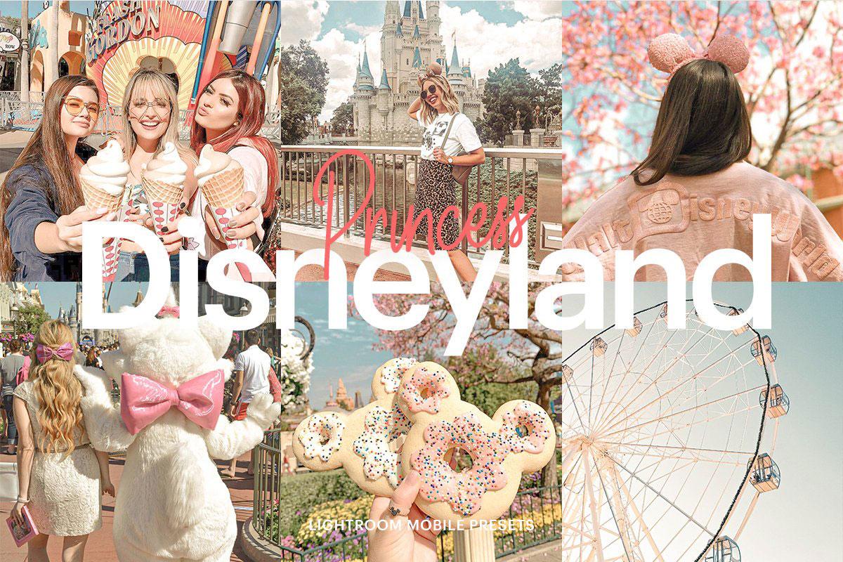 Lightroom Preset-Disneyland Princess 4973030